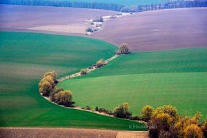 Украинский фотограф снимает поля