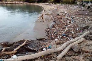 Пляжи Хорватии тонут в пластиковом мусоре (фото)