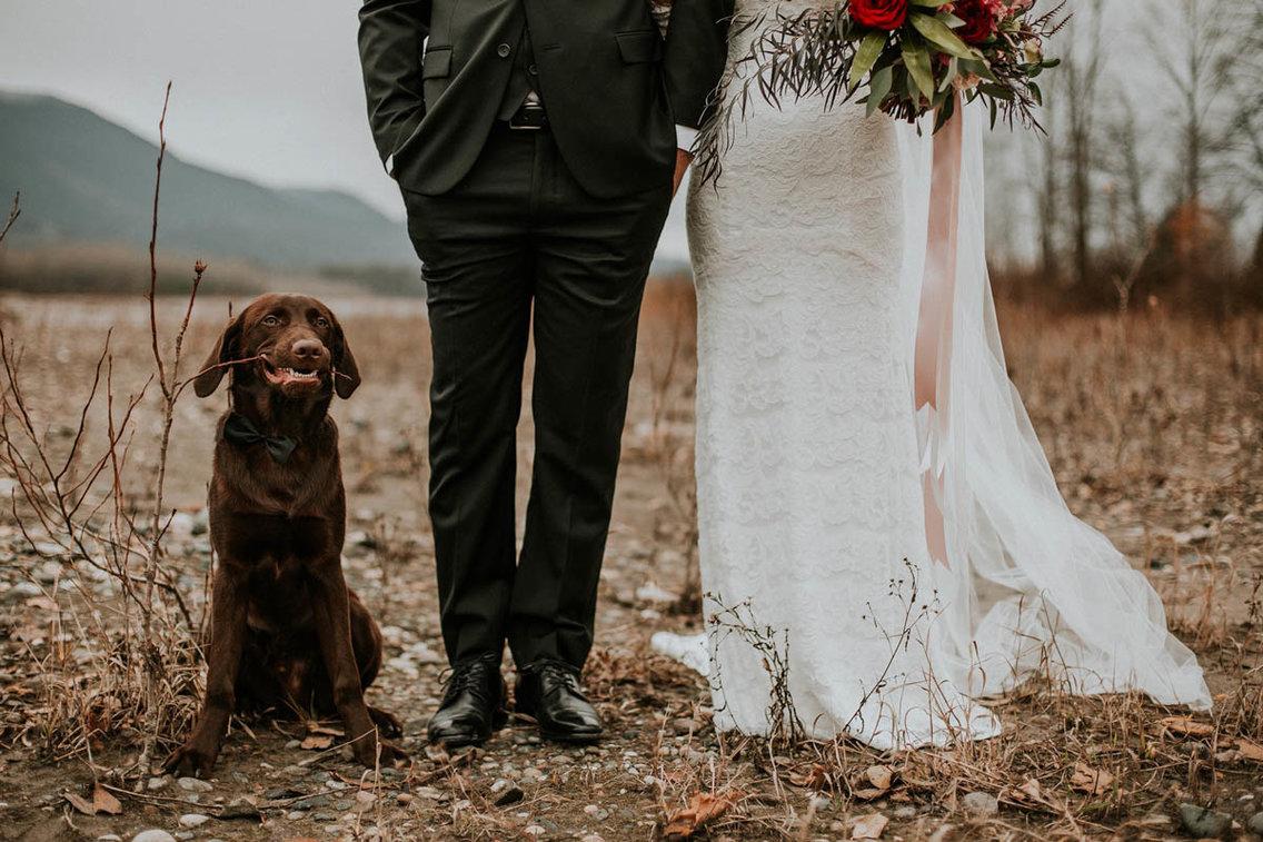 Самый счастливый день: лучшие свадебные фотографии 2017 года Самый счастливый день: лучшие свадебные фотографии 2017 года 5a981a48aae6051d008b464c 1136 757