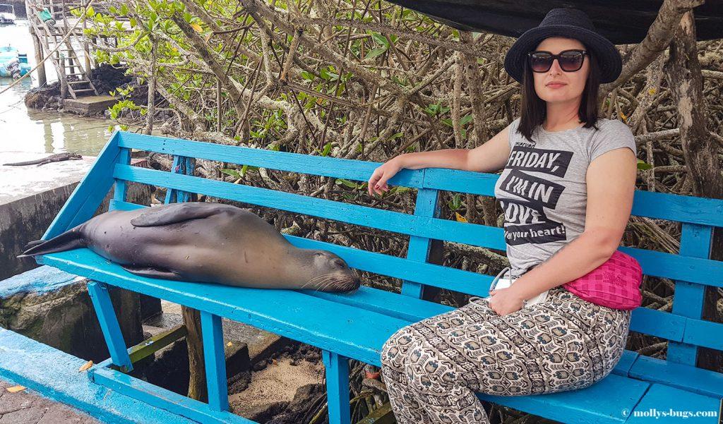 Гигантские черепахи, морские игуаны, действующие вулканы – все о жизни на Галапагосах Гигантские черепахи, морские игуаны, действующие вулканы – все о жизни на Галапагосах Galapagos fishmarket Puerto Ayora 2 1024x601