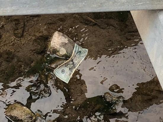 В США из грузовика высыпались полмиллиона долларов