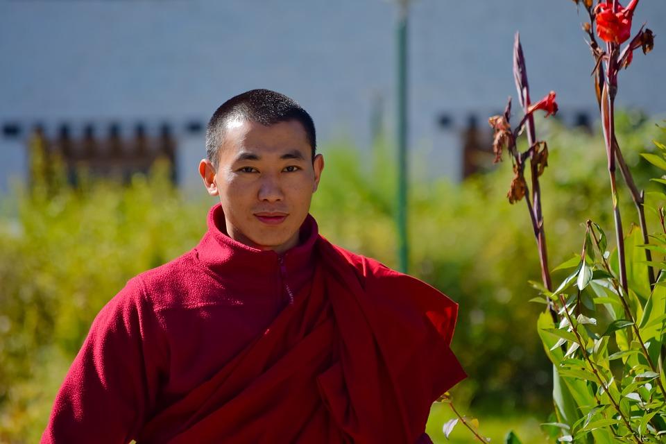 Бутан – единственная страна, которая не загрязняет мир углеродом Бутан – единственная страна, которая не загрязняет мир углеродом bhutan 2830125 960 720