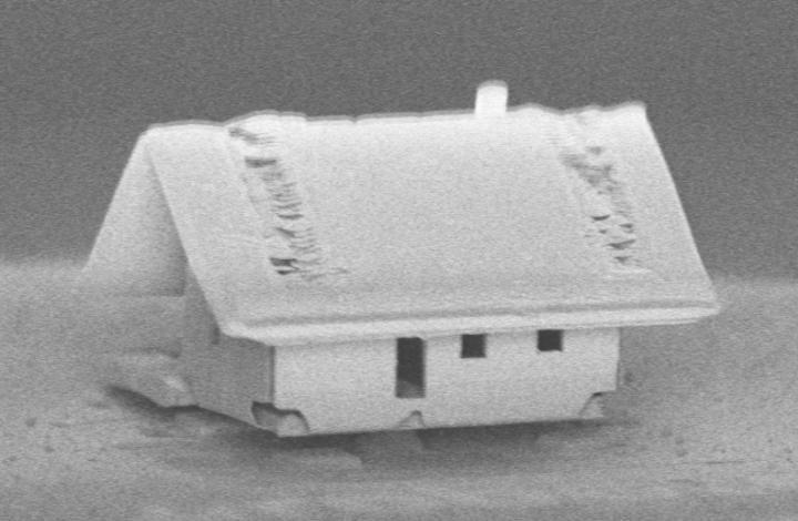 Французская «нанофабрика» собрала самый миниатюрный в мире дом Французская «нанофабрика» собрала самый миниатюрный в мире дом dom