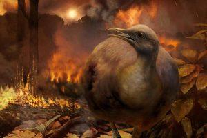 После гибели динозавров птицам пришлось снова учиться летать