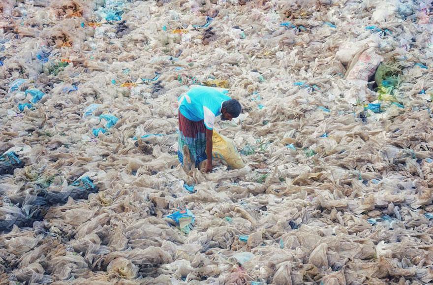 national geographic выпустил номер, посвященный проблеме пластика в океане National Geographic выпустил номер, посвященный проблеме пластика в океане plastic crisis impact on wildlife national geographic june issue cover 20 5afd85026633b  880