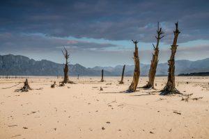 Проблемой нынешнего века станет нехватка воды: NASA