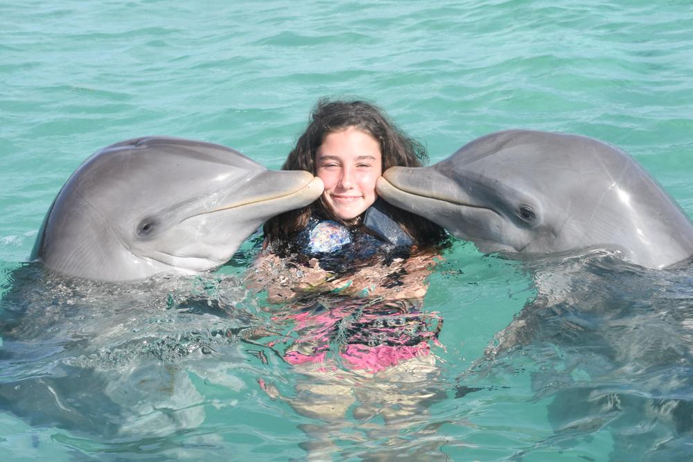 Биологи измерили уровень счастья дельфинов Биологи измерили уровень счастья дельфинов shutterstock 1099429226