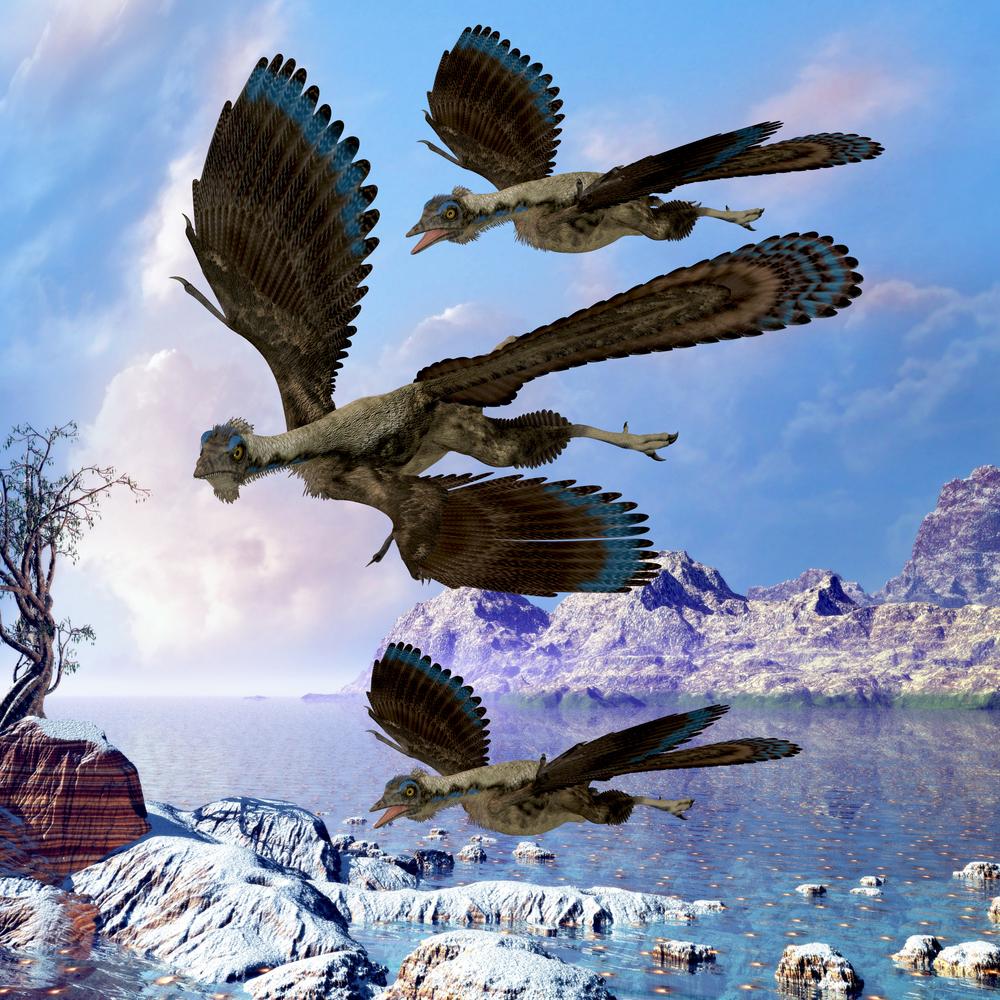 Крылатые динозавры тоже страдали от перхоти