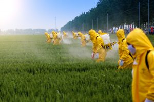 Швейцарцы хотят полностью запретить пестициды