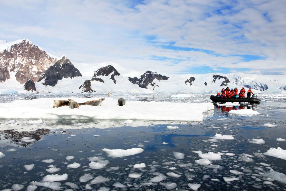 Украинская экспедиция вернулась из Антарктиды