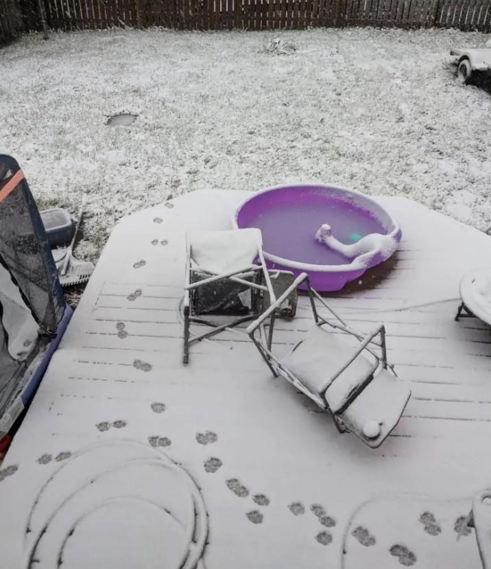 Канаду неожиданно засыпало снегом Канаду неожиданно засыпало снегом 1 16