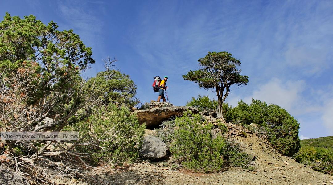 Скалы, бухты и тишина: трекинг на Крите Скалы, бухты и тишина: трекинг на Крите 18