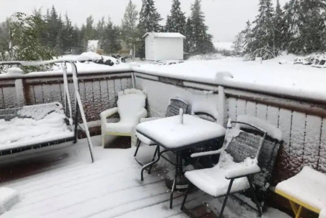 Канаду неожиданно засыпало снегом Канаду неожиданно засыпало снегом 2 16