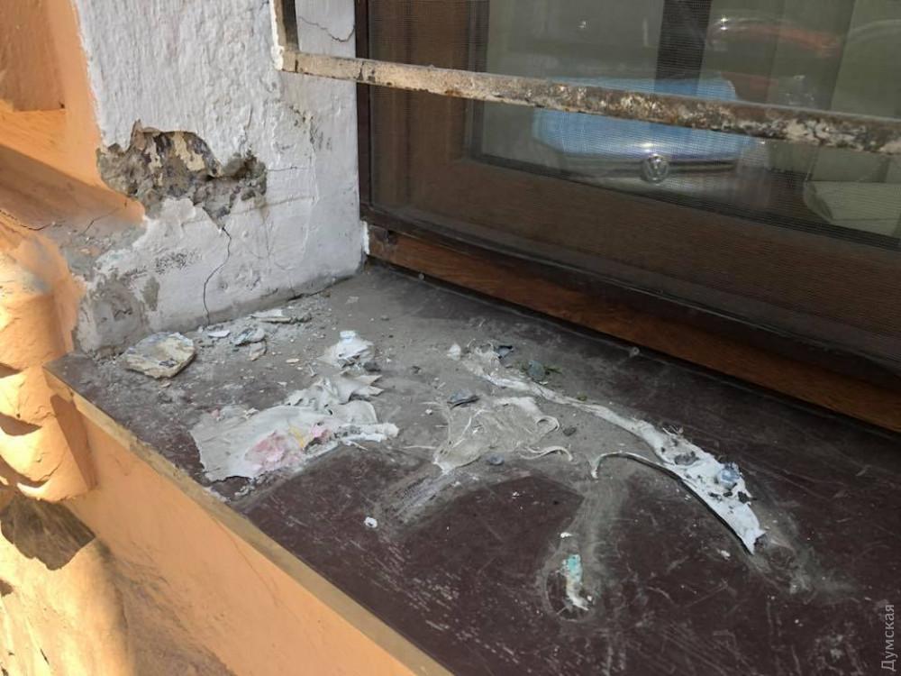 В Одессе украли скульптуру любимого кота Жванецкого В Одессе украли скульптуру любимого кота Жванецкого 2 9