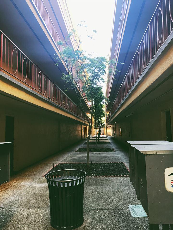 Экзамен на благонадежность: как арендуют квартиры в США Экзамен на благонадежность: как арендуют квартиры в США 31351320 10215066999735887 3746737769254481826 n