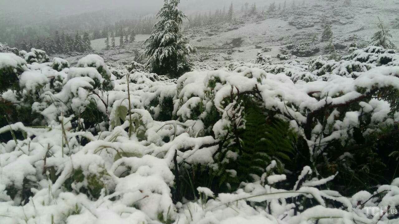 В Закарпатье из-за выпавшего снега эвакуировали детский лагерь