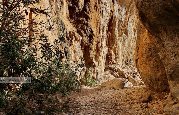Скалы, бухты и тишина: трекинг на Крите Скалы, бухты и тишина: трекинг на Крите 36 kanon 614x395