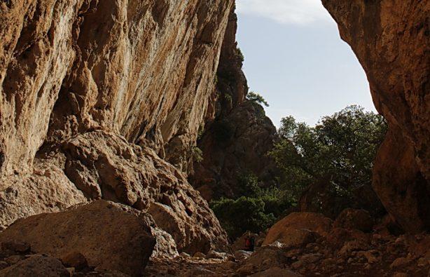 Скалы, бухты и тишина: трекинг на Крите Скалы, бухты и тишина: трекинг на Крите 37 kanon 614x395