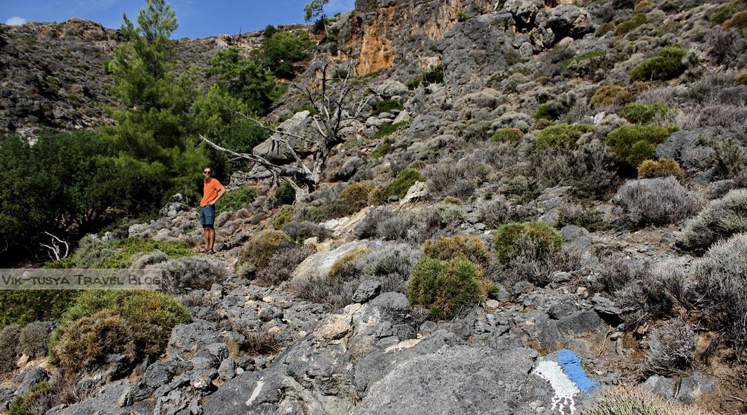 Скалы, бухты и тишина: трекинг на Крите Скалы, бухты и тишина: трекинг на Крите 38 doroga k peshhere