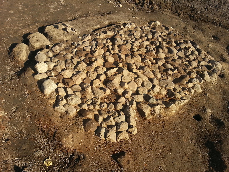 Археологи доказали, что пиво шведы варили еще в железном веке Археологи доказали, что пиво шведы варили еще в железном веке 5b2a6b6732b76