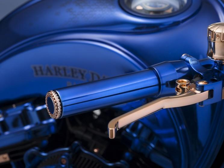 Самый дорогой мотоцикл в мире идет в комплекте с бриллиантовым кольцом и часами Самый дорогой мотоцикл в мире идет в комплекте с бриллиантовым кольцом и часами Harley Davidson blue edition 2 resize md