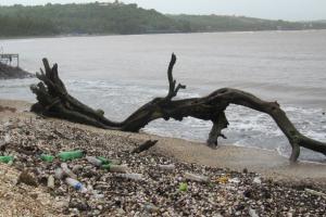Индия планирует полностью отказаться от одноразового пластика через 3 года