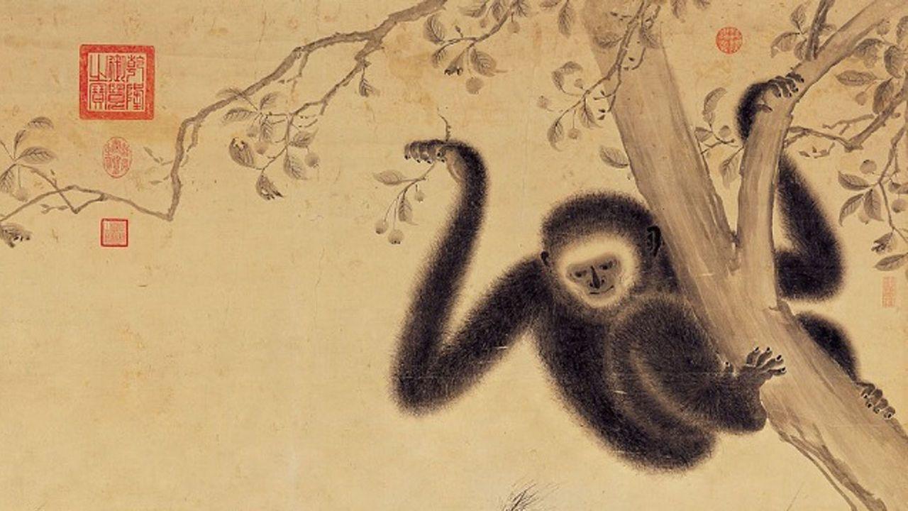 В императорской гробнице Китая нашли неизвестный вид обезьян.Вокруг Света. Украина