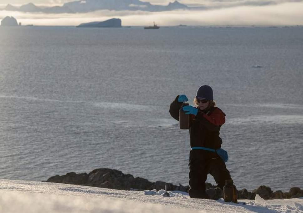 Он уже везде: ученые обнаружили пластик в «нетронутой» пустыне Антарктиды Он уже везде: ученые обнаружили пластик в «нетронутой» пустыне Антарктиды greenpeace antarctic tests