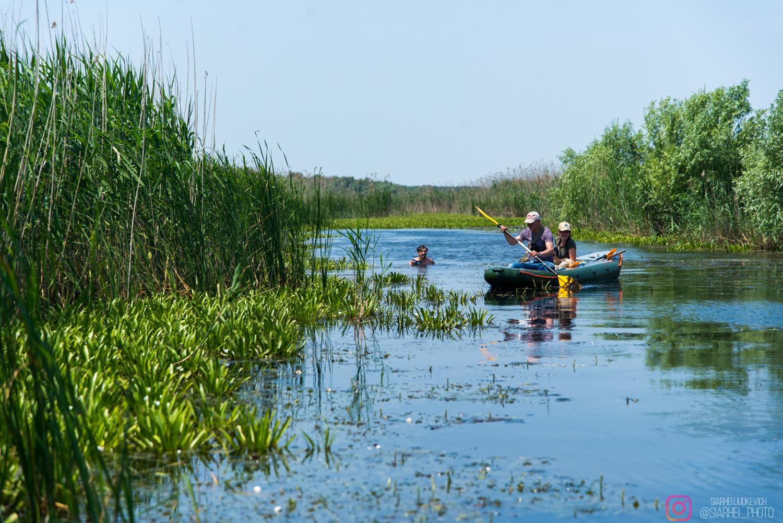 Дунайская жемчужина: как экологи восстановили украинский остров Ермаков