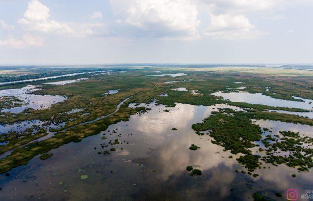 Дунайская жемчужина: как экологи восстановили остров Ермаков Дунайская жемчужина: как экологи восстановили остров Ермаков lyudkevich ermakov 21 614x395