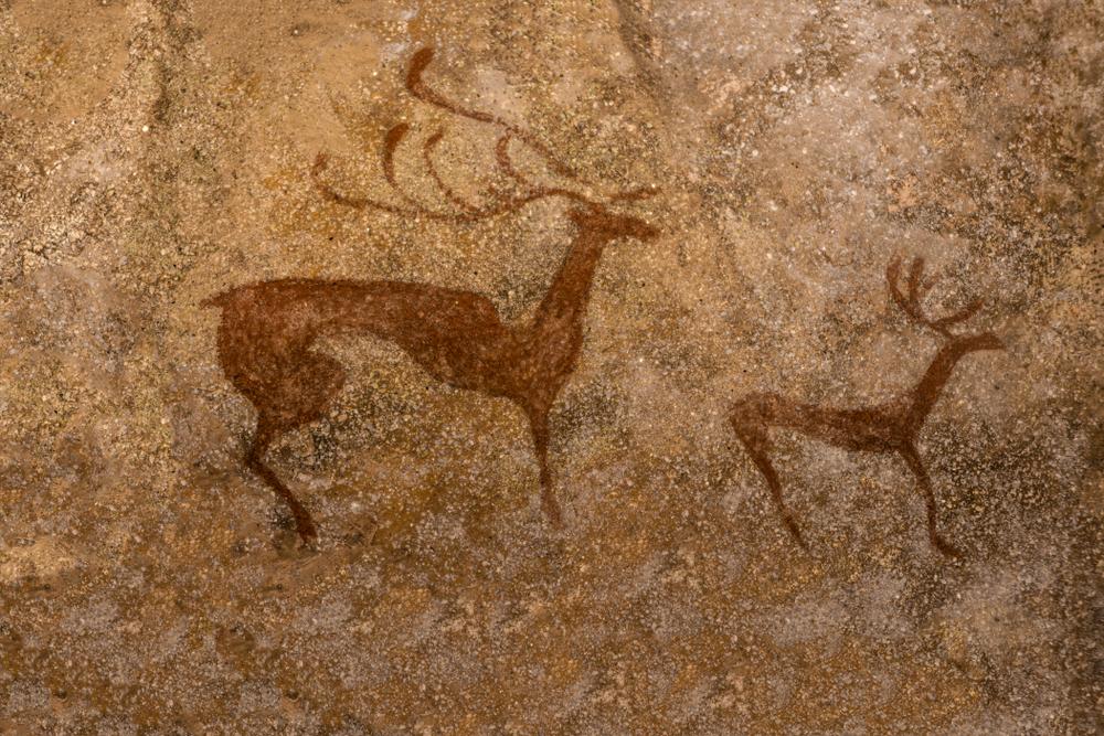 Как охотились неандертальцы? Палеонтологи сделали баллистическую экпертизу.Вокруг Света. Украина