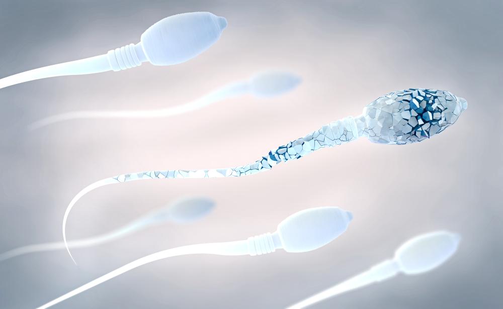 «Отцов» человечества было мало. Генетики объяснили почему «Отцов» человечества было мало. Генетики объяснили почему shutterstock 1097721776