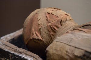 Древние египтяне страдали современными видами онкологии