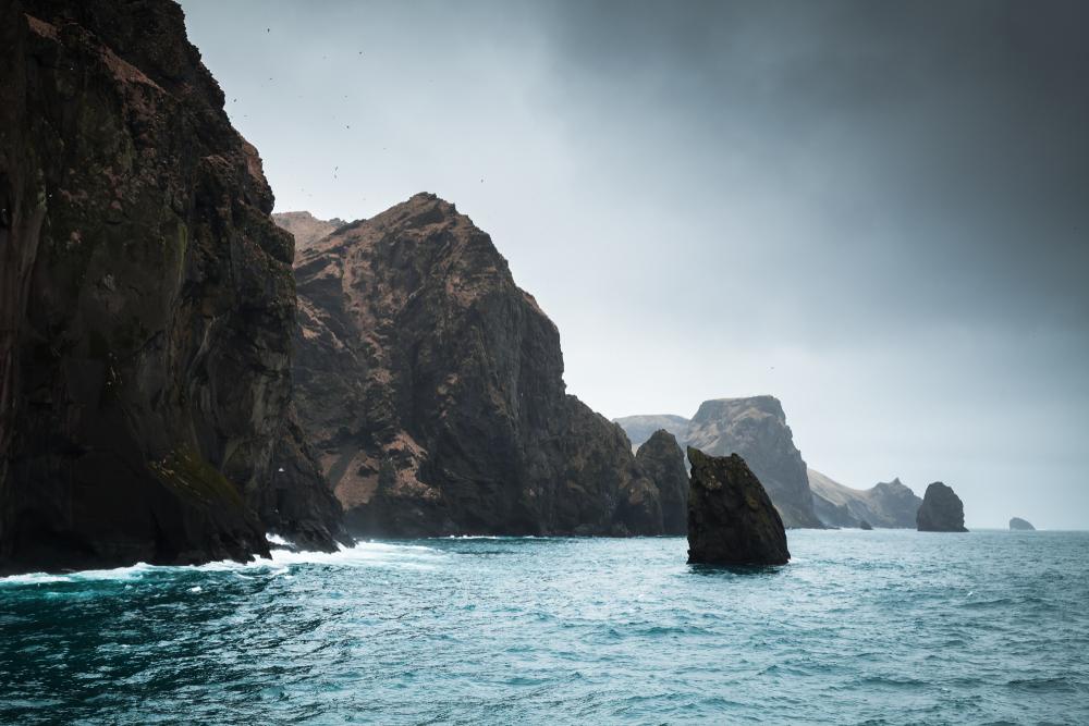Белух из китайского аквариума выпустят в заповеднике Исландии Белух из китайского аквариума выпустят в заповеднике Исландии shutterstock 768974758