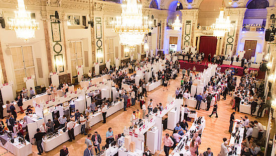 В Вене стартует юбилейный винный фестиваль VieVinum vino 1