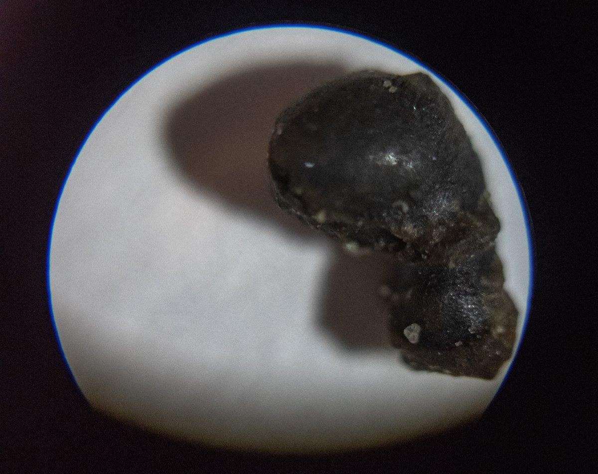 У побережья США ищут фрагменты метеорита размером с поле для гольфа У побережья США ищут фрагменты метеорита размером с поле для гольфа 1 2