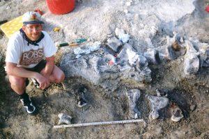 По следу: палеонтологи измерили рост самого крупного динозавра планеты