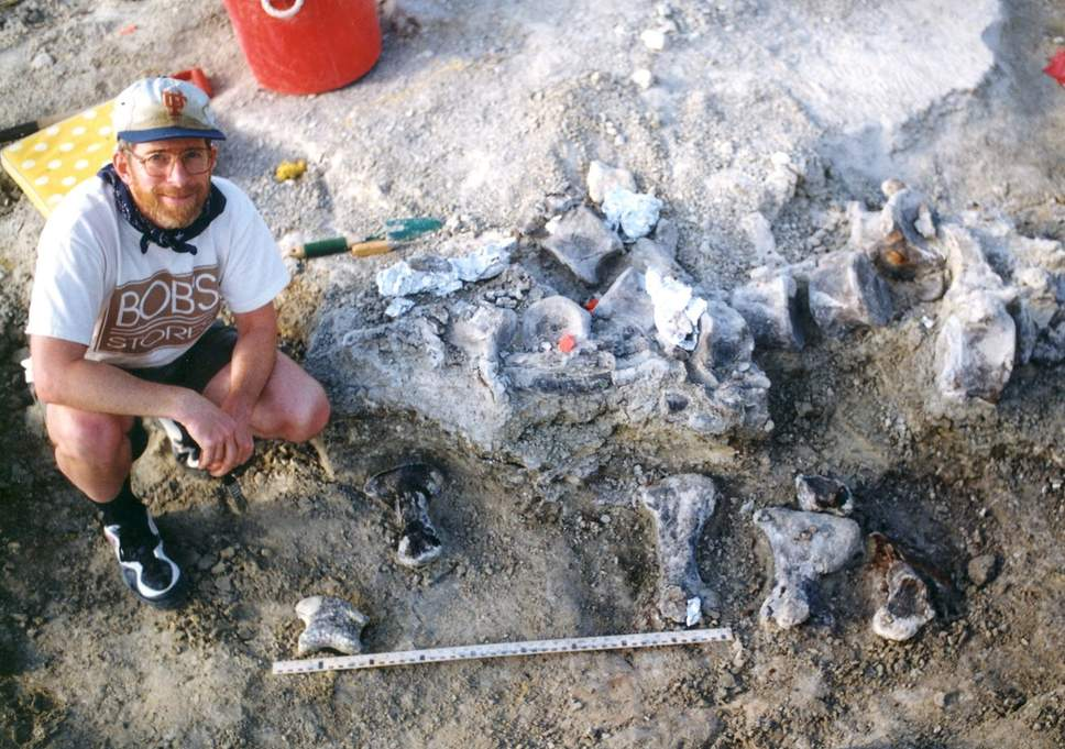 По следу: палеонтологи измерили рост самого крупного динозавра планеты.Вокруг Света. Украина