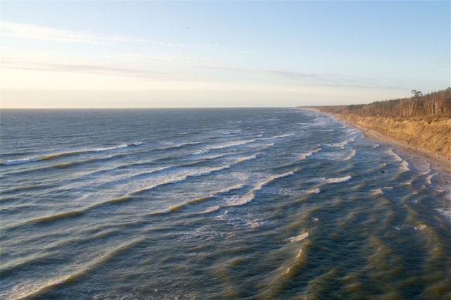 Польша запретила купаться в Балтийском море из-за токсичных бактерий