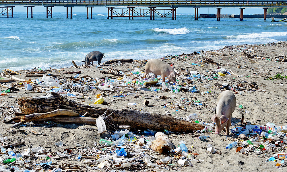 Гавайи, Бали, Доминикана: 13 самых грязных пляжей мира (фото).Вокруг Света. Украина