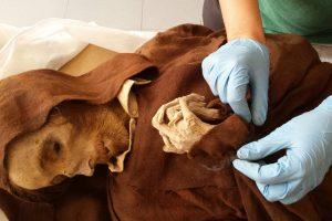 В Испании открыли Музей мумий (фото)