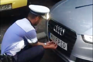 В Румынии полиция сняла со шведской машины номера, оскорбляющие власть