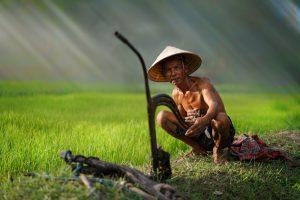 Древние обитатели Азии унаследовали гены четырех волн мигрантов: генетики