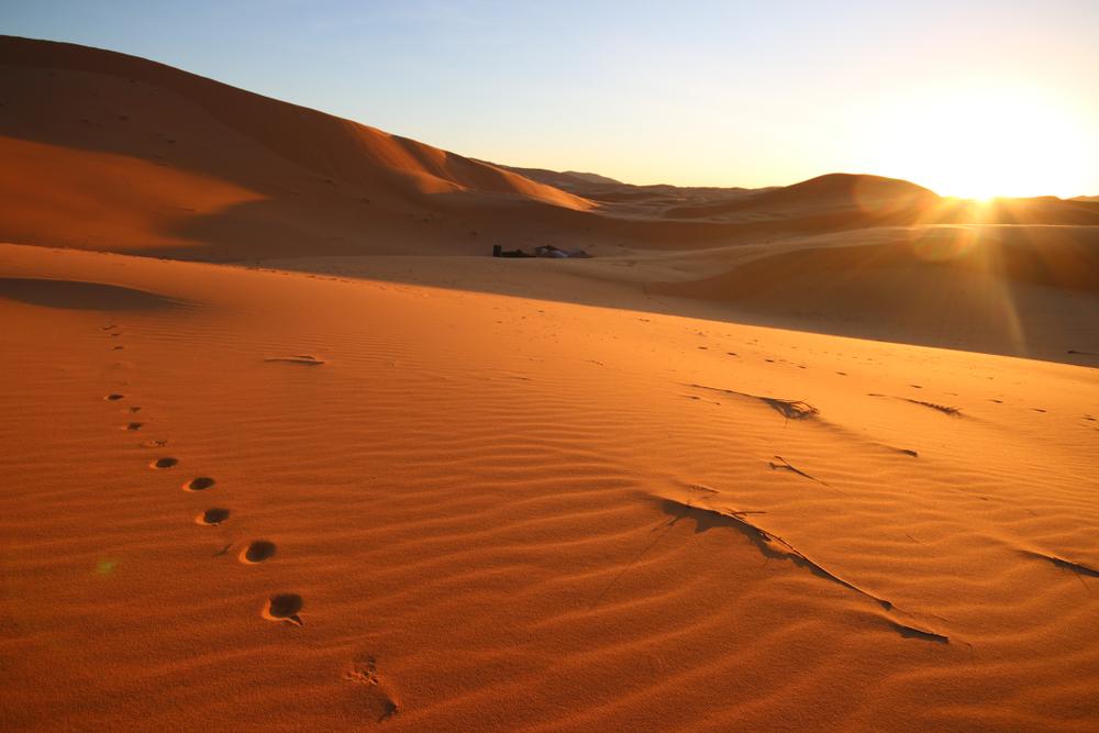Ученые нашли древнейший краситель в мире под песками Сахары