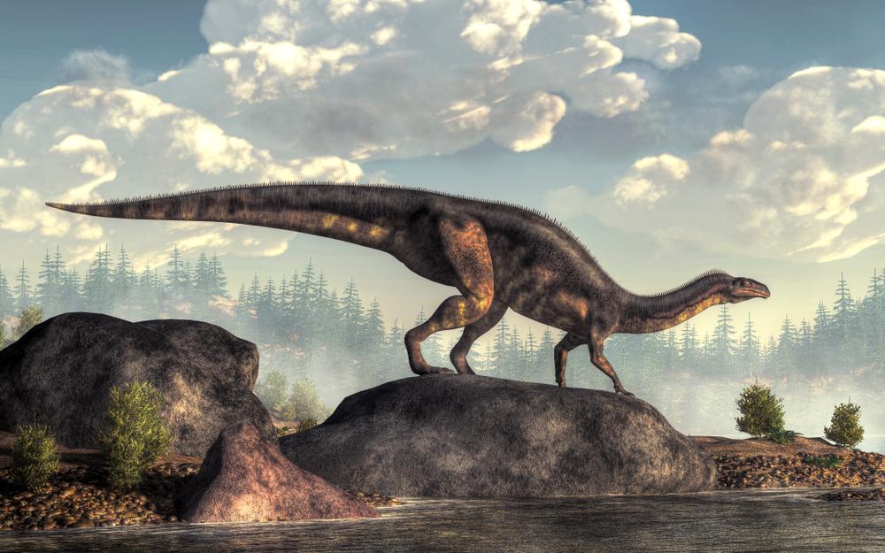 Палеодиета: сколько съедали динозавры, чтобы поддержать колоссальный вес?.Вокруг Света. Украина