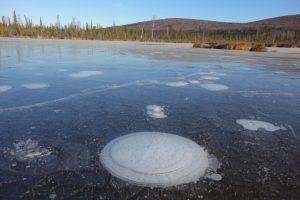NASA: таяние льдов разогревает планету сильнее, чем парниковые газы