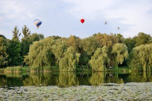 Фестиваль воздушных шаров в парке