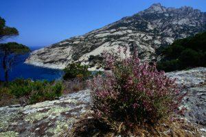 Загадочный остров Монтекристо открывают для туристов