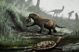 Палеонтологи нашли доисторическую крысу, которая несла яйца