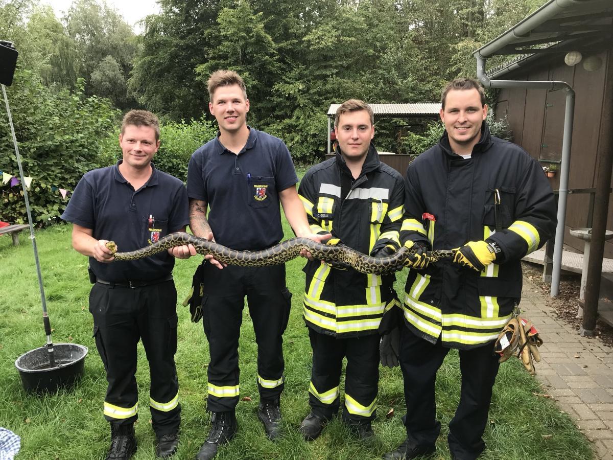 В немецком озере поймали анаконду